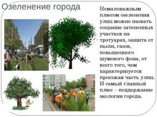 Озеленение города Немаловажным плюсом озеленения улиц можно назвать создание