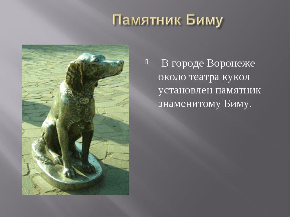 В городе Воронеже около театра кукол установлен памятник знаменитому Биму.