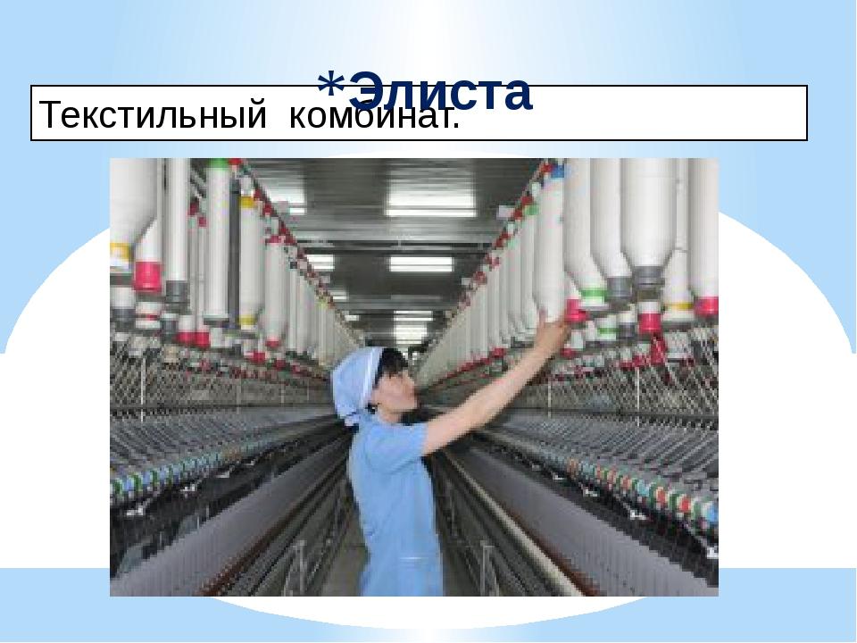 Текстильный комбинат. Элиста