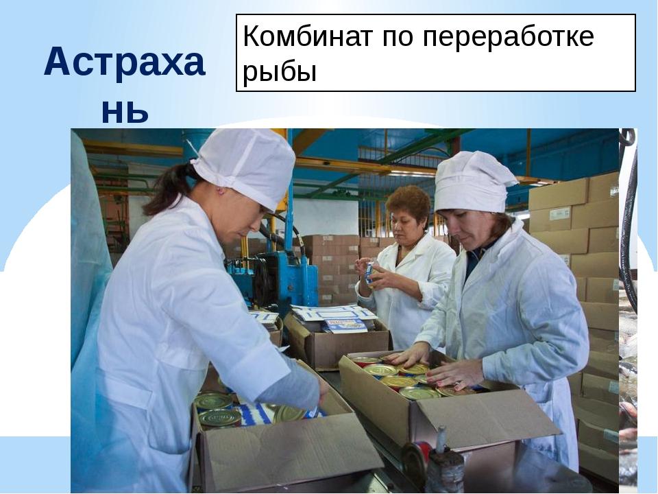 Комбинат по переработке рыбы Астрахань