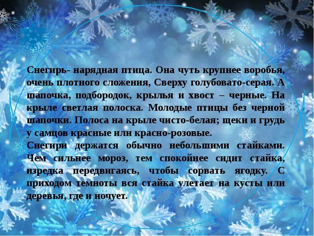 Снегирь- нарядная птица. Она чуть крупнее воробья, очень плотного сложения, С...