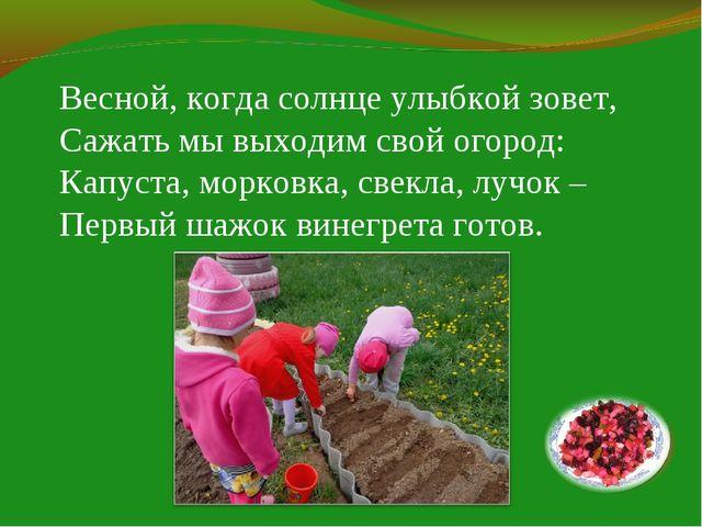 Весной, когда солнце улыбкой зовет, Сажать мы выходим свой огород: Капуста, м...