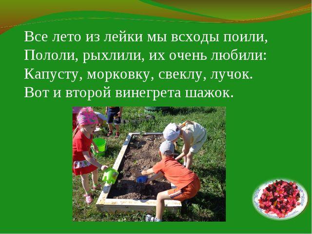 Все лето из лейки мы всходы поили, Пололи, рыхлили, их очень любили: Капусту,...