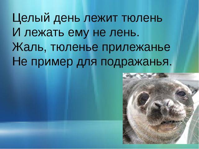 Целый день лежит тюлень И лежать ему не лень. Жаль, тюленье прилежанье Не при...