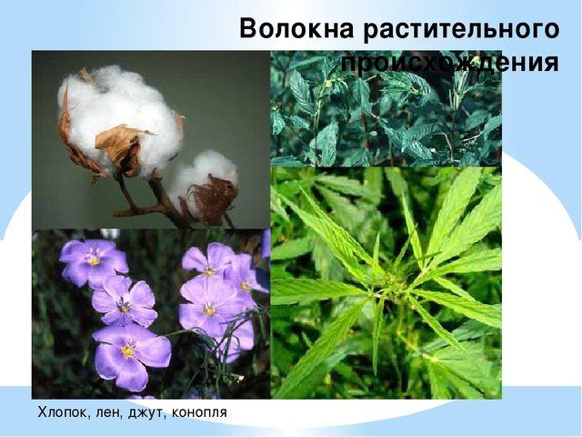 Волокна растительного происхождения Хлопок, лен, джут, конопля