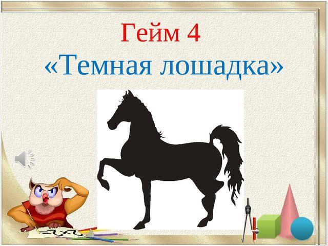 Гейм 4 «Темная лошадка»