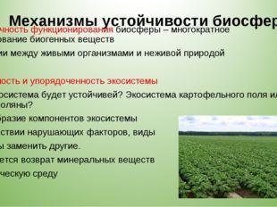 Механизмы устойчивости биосферы 3. Цикличность функционирования биосферы – мн