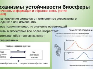 Механизмы устойчивости биосферы 6. Избыточность информации и обратная связь (