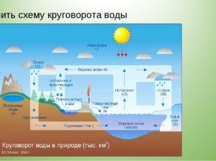 Объяснить схему круговорота воды