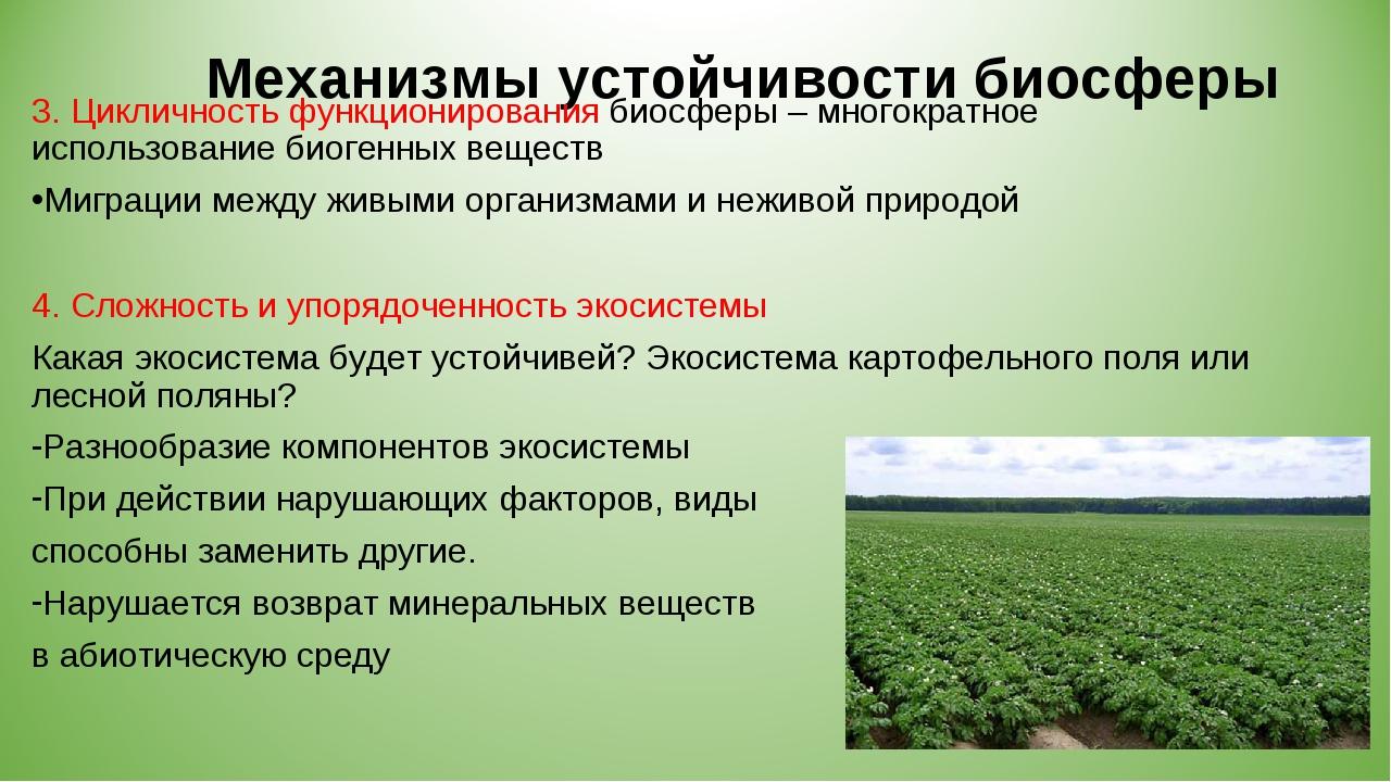 Механизмы устойчивости биосферы 3. Цикличность функционирования биосферы – мн...