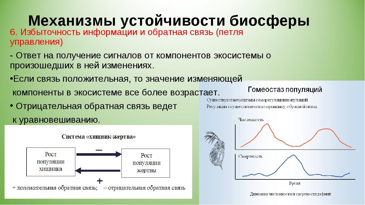 Механизмы устойчивости биосферы 6. Избыточность информации и обратная связь (...