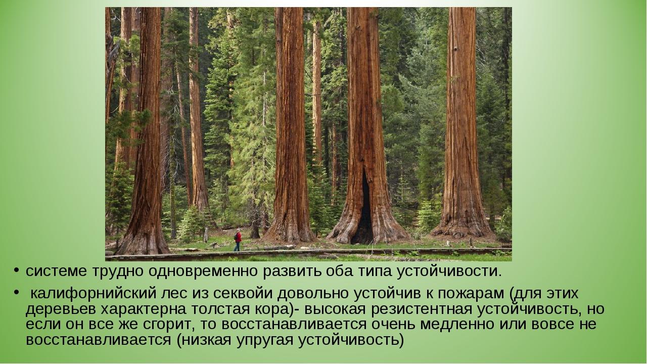 системе трудно одновременно развить оба типа устойчивости. калифорнийский лес...