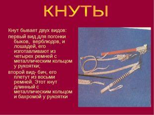 Кнут бывает двух видов: первый вид для погонки быков, верблюдов, и лошадей, е