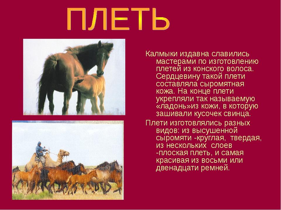 Калмыки издавна славились мастерами по изготовлению плетей из конского волоса...