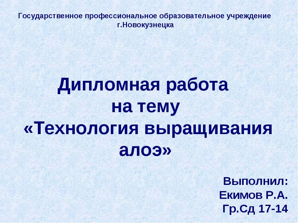 Государственное профессиональное образовательное учреждение г.Новокузнецка Ди...