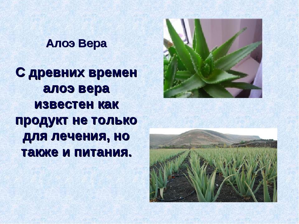 Алоэ Вера С древних времен алоэ вера известен как продукт не только для лечен...