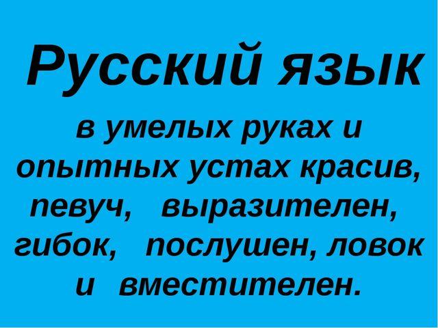 Русский язык в умелых руках и опытных устах красив, певуч, выразителен, ги...