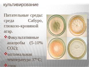 культивирование Питательные среды: среда Сабуро, глюкозо-кровяной агар. Факул