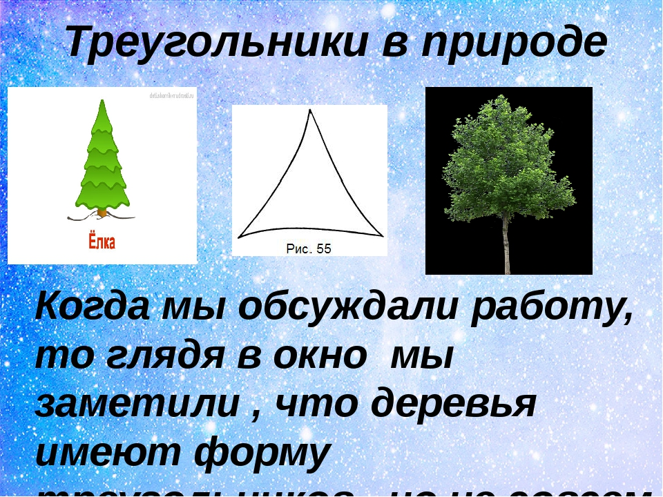 Треугольники в природе Когда мы обсуждали работу, то глядя в окно мы заметили...