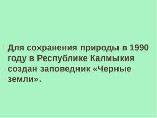 Для сохранения природы в 1990 году в Республике Калмыкия создан заповедник «
