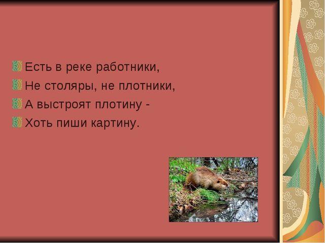 Есть в реке работники, Не столяры, не плотники, А выстроят плотину - Хоть пиш...