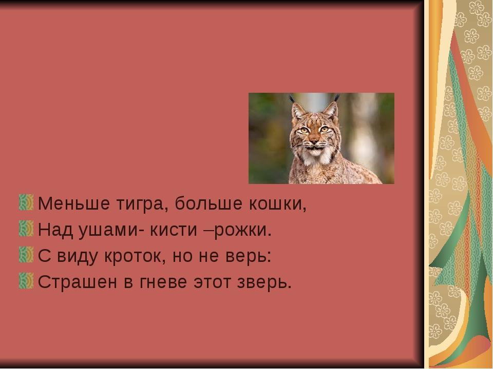 Меньше тигра, больше кошки, Над ушами- кисти –рожки. С виду кроток, но не ве...