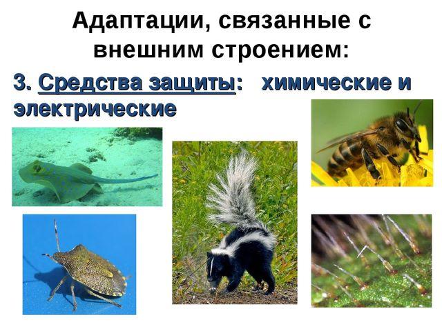 Адаптации, связанные с внешним строением: 3. Средства защиты: химические и эл...