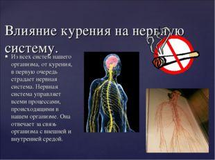 Из всех систем нашего организма, от курения, в первую очередь страдает нервна