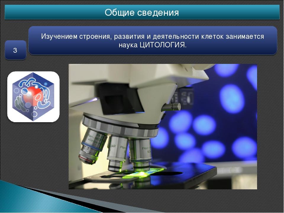Общие сведения 3 Изучением строения, развития и деятельности клеток занимаетс...