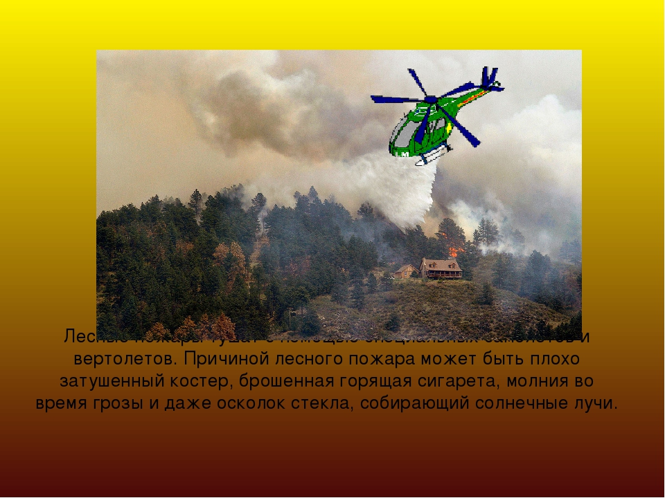 Лесные пожары тушат с помощью специальных самолетов и вертолетов. Причиной ле...
