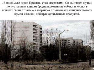 . В одночасье город Припять стал «мертвым». Он выглядел жутко: по пустынным у