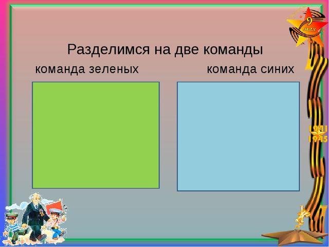Разделимся на две команды команда зеленых команда синих