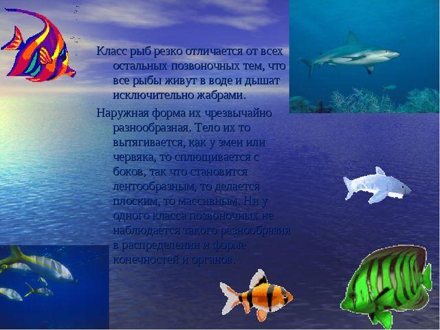 Класс рыб резко отличается от всех остальных позвоночных тем, что все рыбы жи...