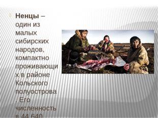 Ненцы– один из малых сибирских народов, компактно проживающих в районе Коль