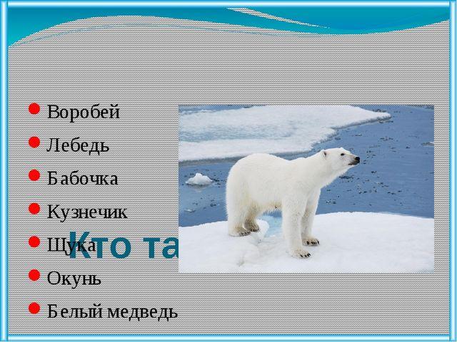 Кто такие звери ? Воробей Лебедь Бабочка Кузнечик Щука Окунь Белый медведь