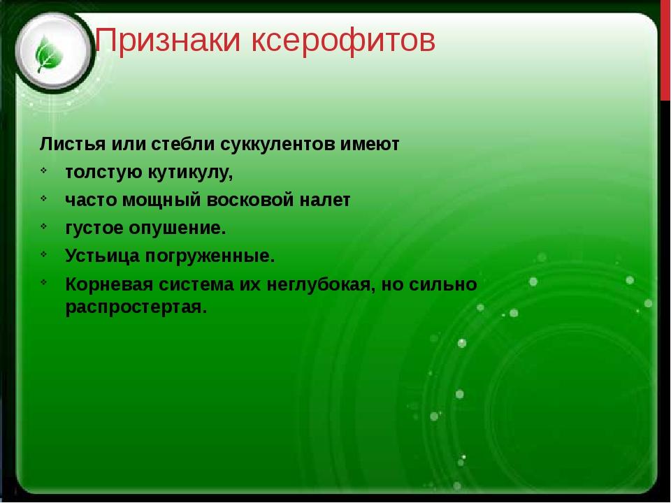 Признаки ксерофитов Листья или стебли суккулентов имеют толстую кутикулу, час...