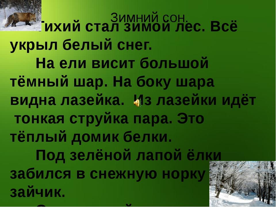 Тихий стал зимой лес. Всё укрыл белый снег. На ели висит большой тёмный шар....
