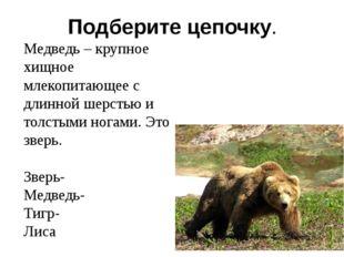 Подберите цепочку. Медведь – крупное хищное млекопитающее с длинной шерстью и