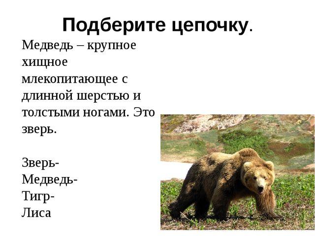 Подберите цепочку. Медведь – крупное хищное млекопитающее с длинной шерстью и...