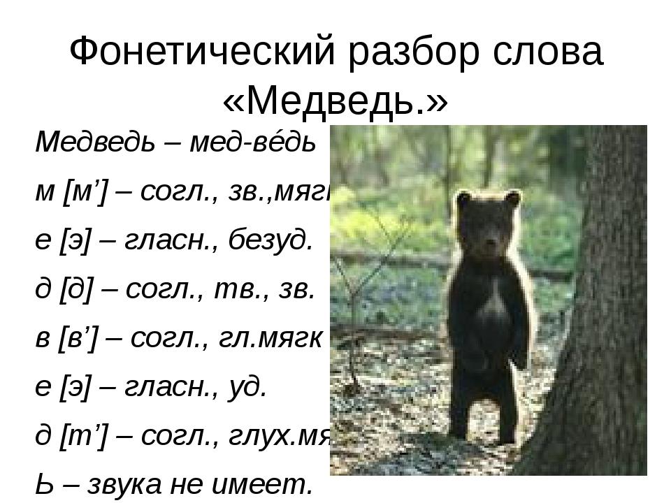 Фонетический разбор слова «Медведь.» Медведь – мед-вéдь м [м'] – согл., зв.,м...