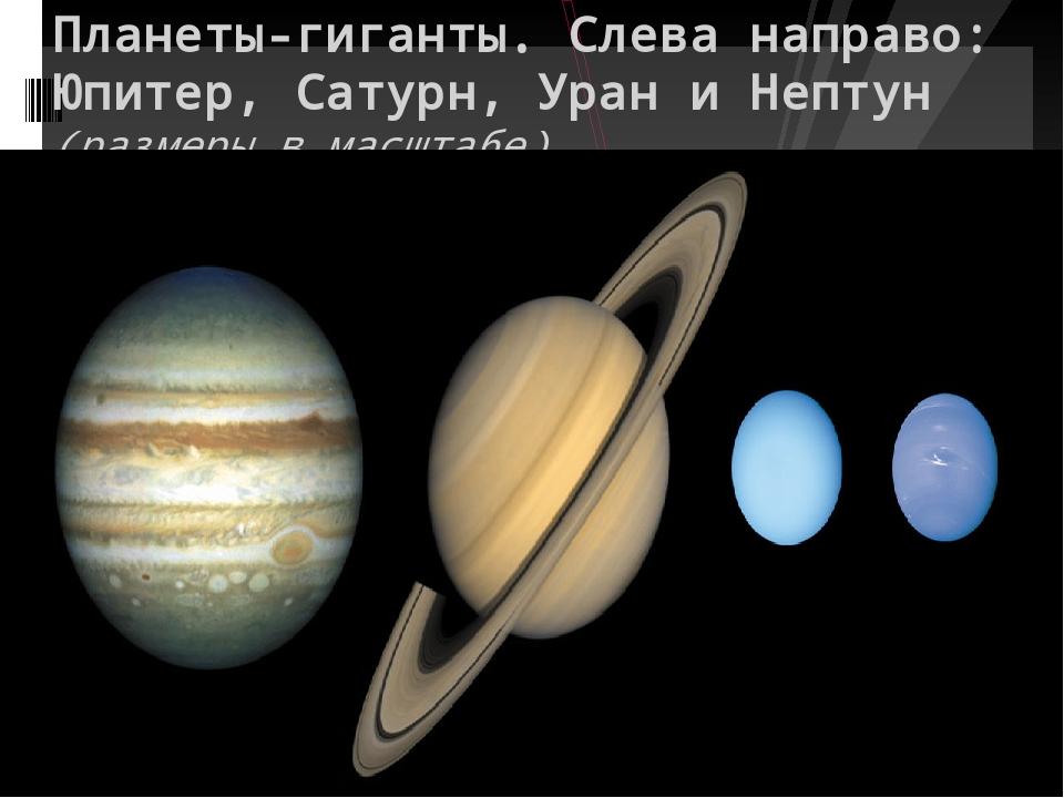 Планеты-гиганты. Слева направо: Юпитер, Сатурн, Уран и Нептун (размеры в мас...