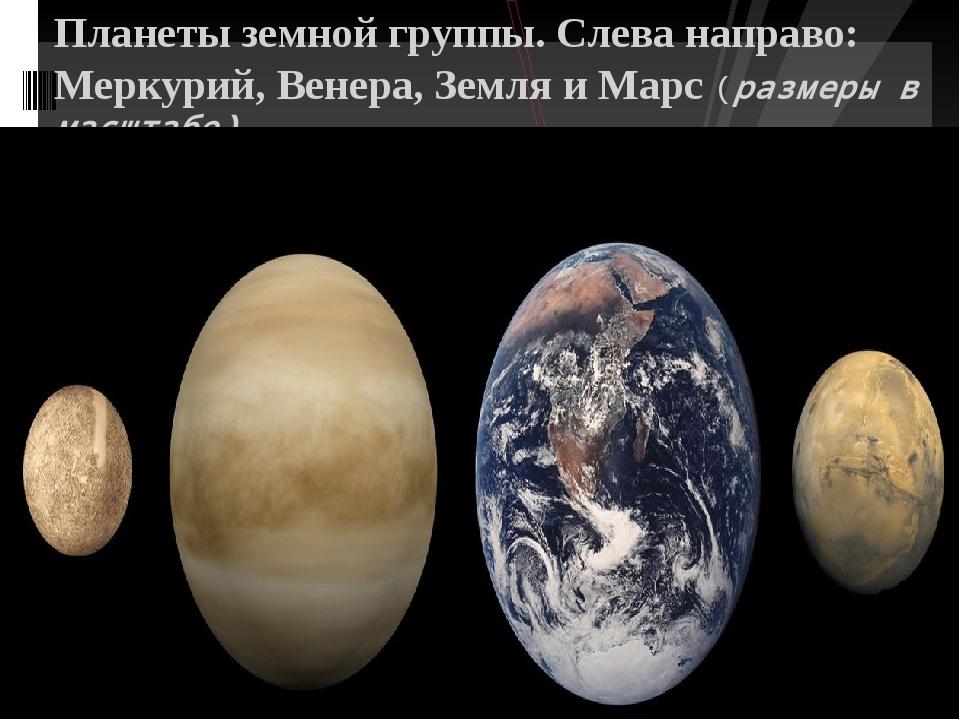 Планеты земной группы. Слева направо: Меркурий, Венера, Земля и Марс (размер...
