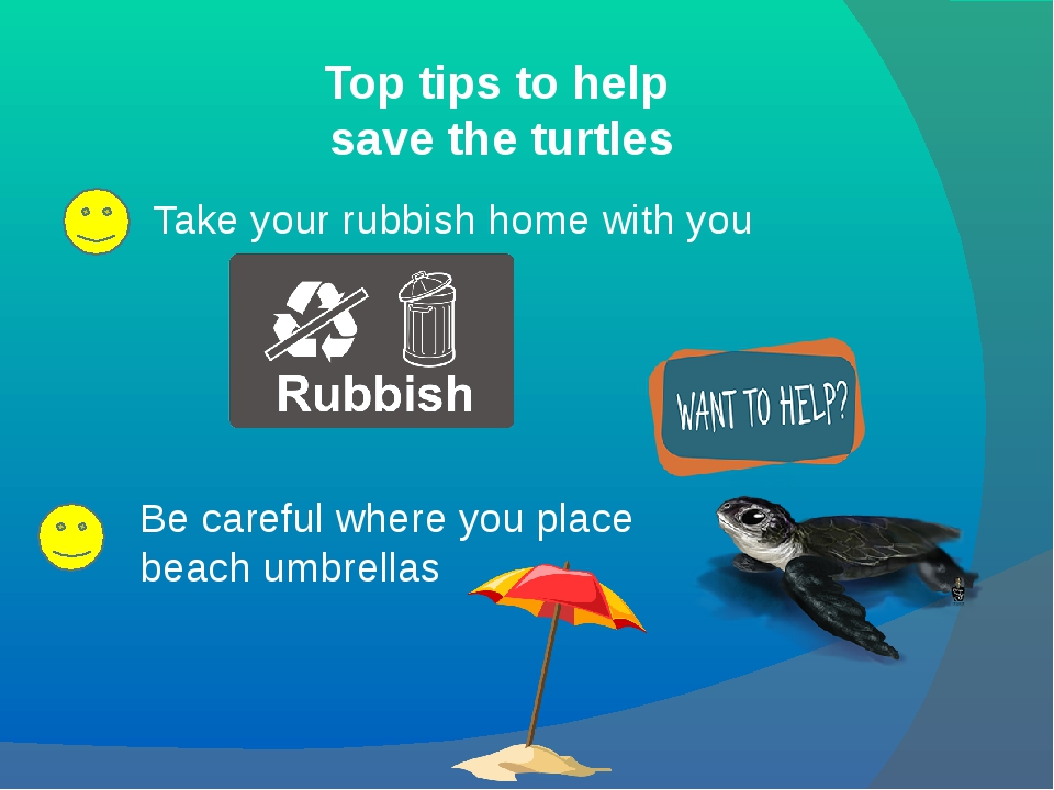 Top tips to help save the turtles Take your rubbish home with you Be careful...