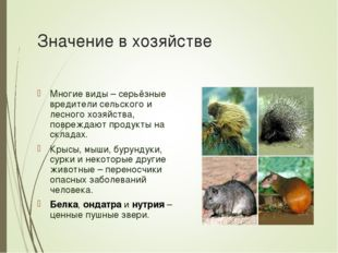 Значение в хозяйстве Многие виды – серьёзные вредители сельского и лесного хо