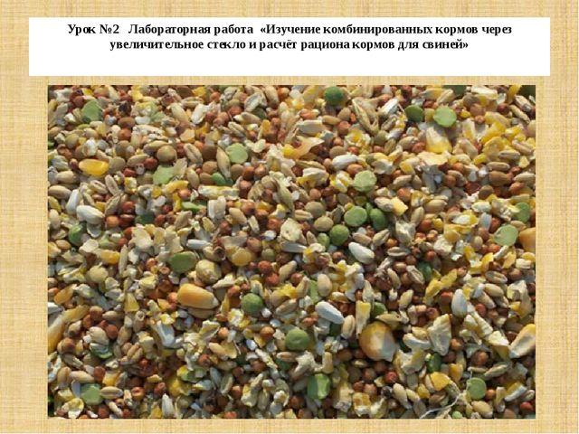 Урок №2 Лабораторная работа «Изучение комбинированных кормов через увеличител...