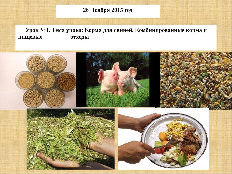 Урок №1. Тема урока: Корма для свиней. Комбинированные корма и пищевые отходы...