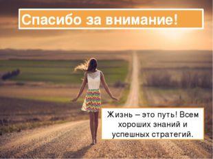Спасибо за внимание! Жизнь – это путь! Всем хороших знаний и успешных стратег