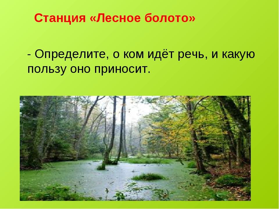 Станция «Лесное болото» - Определите, о ком идёт речь, и какую пользу оно пр...