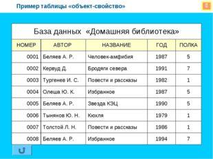  Пример таблицы «объект-свойство» База данных «Домашняя библиотека» НОМЕРА