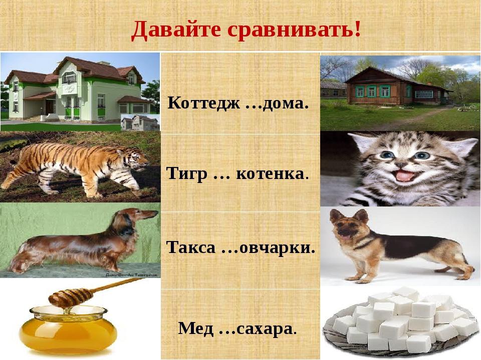 Давайте сравнивать!  Коттедж …дома.   Тигр … котенка.   Такса …овчарки....